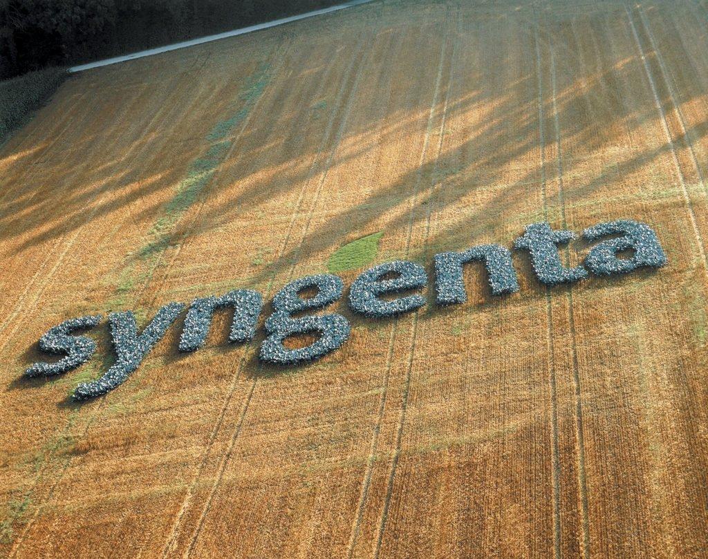 Syngenta 1024x809 - Syngenta